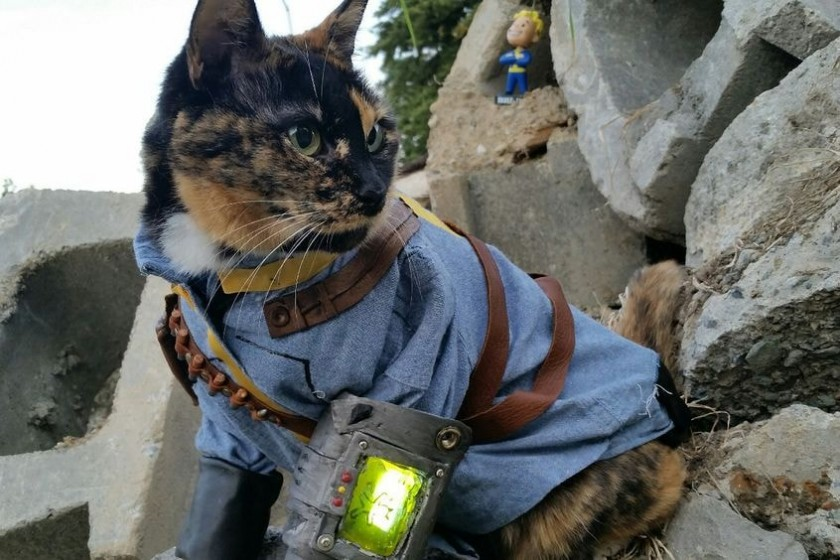 grus-Fallout-kot3