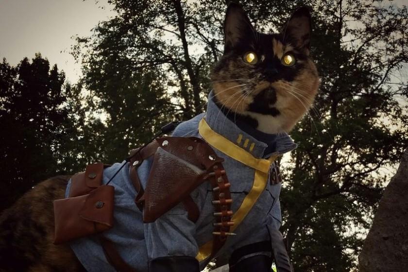 grus-Fallout-kot6