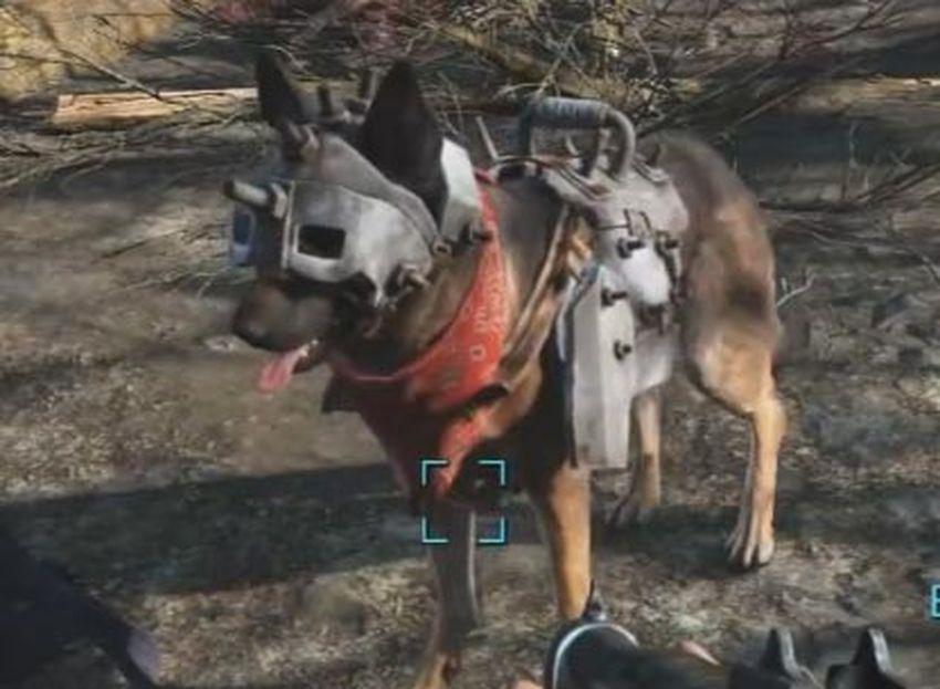 Броня для собаки в Fallout 4